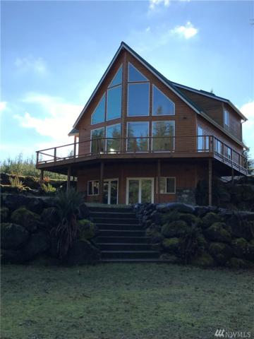 392 Hillstrom Rd, Port Angeles, WA 98363 (#1232779) :: Better Homes and Gardens Real Estate McKenzie Group