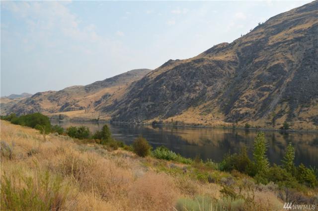 443 Hidden Lane, Chelan, WA 98816 (#1233391) :: Nick McLean Real Estate Group