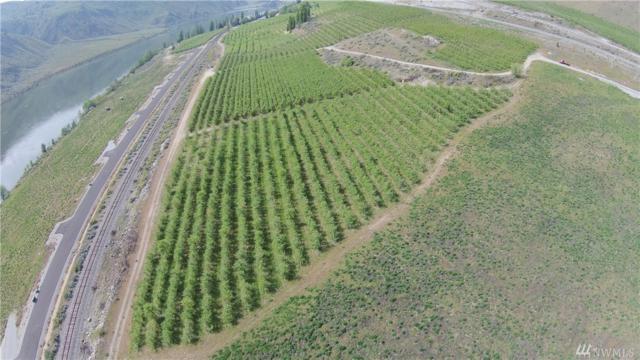 519 Hidden Lane, Chelan, WA 98816 (#1233399) :: Nick McLean Real Estate Group
