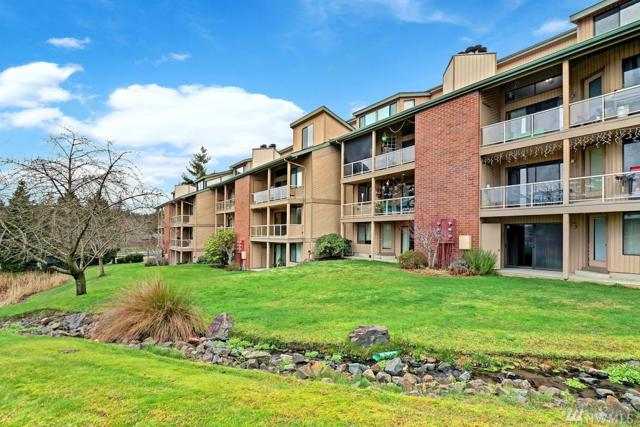 23001 Lakeview Dr #204, Mountlake Terrace, WA 98043 (#1233499) :: The Snow Group at Keller Williams Downtown Seattle