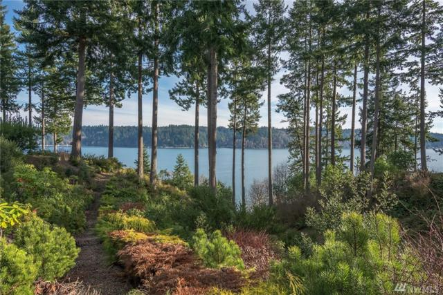 502 123rd St Ct NW, Gig Harbor, WA 98332 (#1233896) :: Homes on the Sound