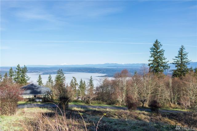 0 SE Cougar Mountain Dr, Issaquah, WA 98027 (#1233987) :: The Vija Group - Keller Williams Realty