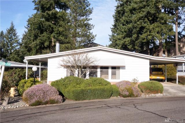 201 Union Ave SE #164, Renton, WA 98059 (#1234024) :: The DiBello Real Estate Group