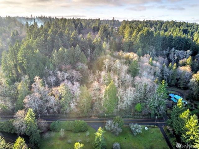 0 Goodrich Dr NW, Gig Harbor, WA 98329 (#1234380) :: Ben Kinney Real Estate Team