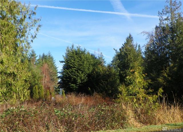 0-XXX Highland Dr, Port Ludlow, WA 98365 (#1234926) :: Mike & Sandi Nelson Real Estate