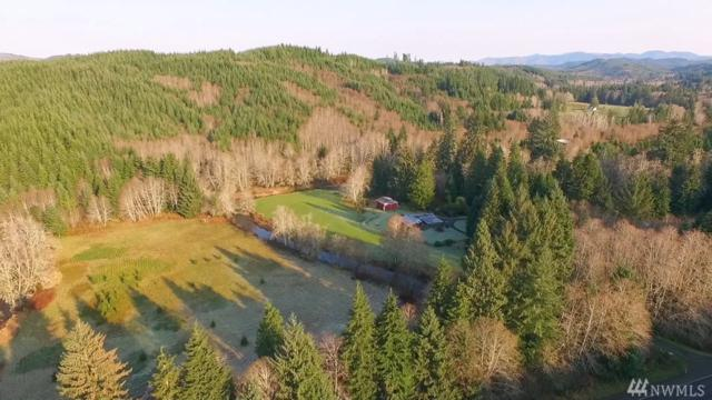 1351 State Route 4, Naselle, WA 98638 (#1234987) :: Real Estate Solutions Group