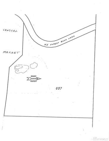 0 NE Forest Rock Lane, Poulsbo, WA 98370 (#1235306) :: Mike & Sandi Nelson Real Estate