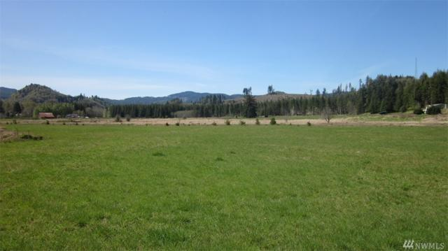 0-Lot 5 Doyle Rd, Lebam, WA 98554 (#1235388) :: Homes on the Sound