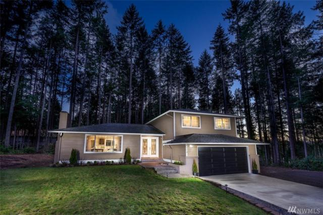4114 101st St Ct NW, Gig Harbor, WA 98332 (#1235733) :: Canterwood Real Estate Team