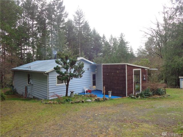 308762 Highway 101, Brinnon, WA 98320 (#1236163) :: Homes on the Sound