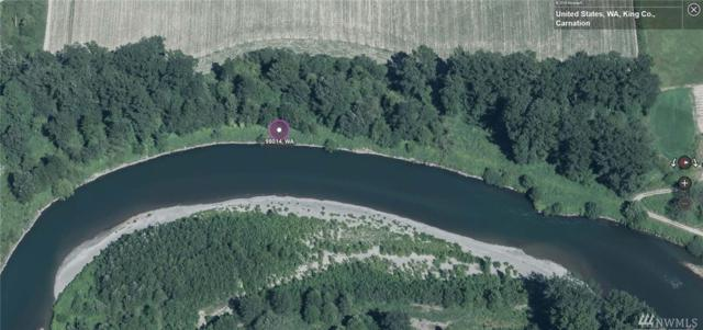 0 310th Ave NE, Carnation, WA 98014 (#1236421) :: Homes on the Sound