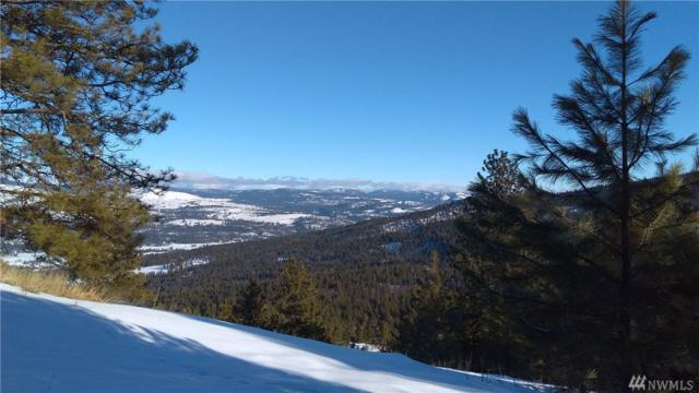 82 Doe Mountain Rd, Tonasket, WA 98855 (#1236982) :: Homes on the Sound