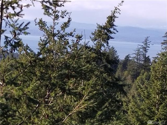 0-NHN Capron Road, Friday Harbor, WA 98250 (#1237057) :: Homes on the Sound