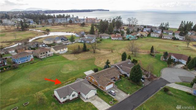 4749 Sawgrass Wy, Blaine, WA 98230 (#1237587) :: Canterwood Real Estate Team