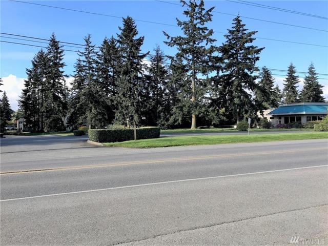 902 Ness' Corner Rd, Port Hadlock, WA 98339 (#1237843) :: Keller Williams - Shook Home Group