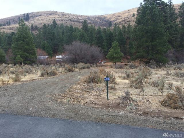 6800 Secret Canyon Rd, Ellensburg, WA 98926 (#1237876) :: Homes on the Sound