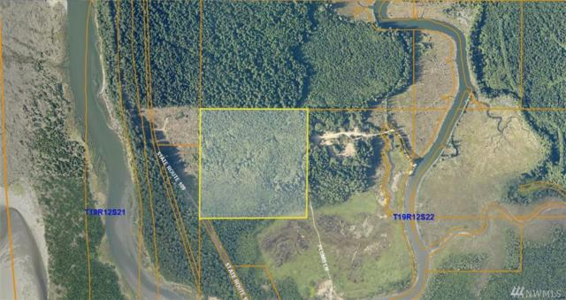 3260 State Route 109, Copalis Beach, WA 98535 (#1238172) :: Homes on the Sound