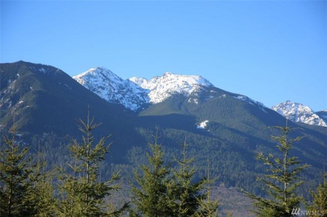 999 Frog Creek Dr, Port Angeles, WA 98362 (#1238258) :: Homes on the Sound