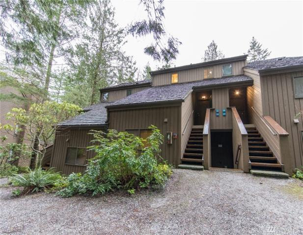 10500 Mount Baker Hwy #116, Glacier, WA 98244 (#1238463) :: Homes on the Sound