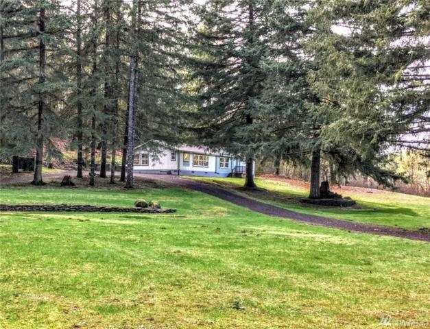 5441 133rd Ave SW, Rochester, WA 98579 (#1238770) :: Homes on the Sound