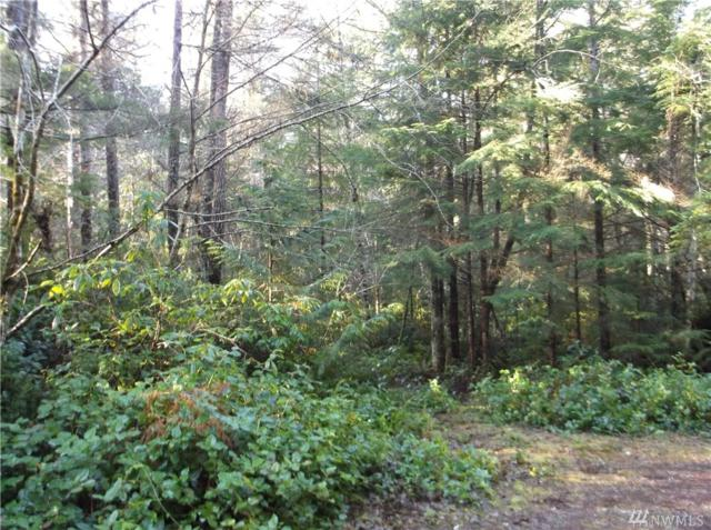 111111 NE D And J Trail, Tahuya, WA 98588 (#1239031) :: Homes on the Sound
