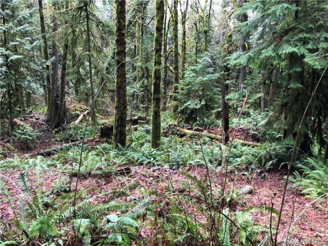 120 E Olympic View St, Belfair, WA 98528 (#1239235) :: Tribeca NW Real Estate