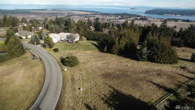 0 Doe Run Rd, Sequim, WA 98382 (#1239438) :: Homes on the Sound