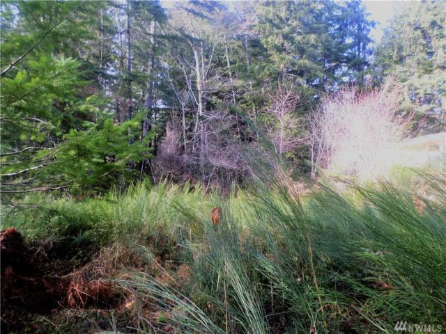 100 N Mountain View Dr, Hoodsport, WA 98548 (#1239720) :: Homes on the Sound