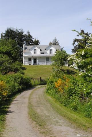 8000 NE Lovgreen Rd W, Bainbridge Island, WA 98110 (#1239940) :: Canterwood Real Estate Team
