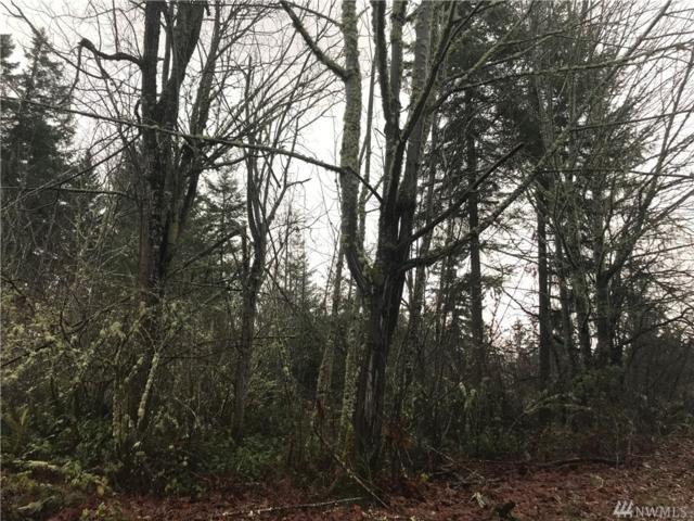 41201 111th Av Ct E, Eatonville, WA 98328 (#1239951) :: Homes on the Sound