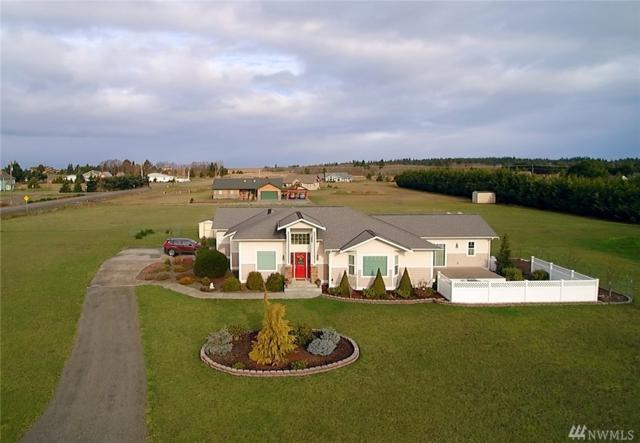 31 Buckhorn Rd, Sequim, WA 98382 (#1240039) :: Homes on the Sound
