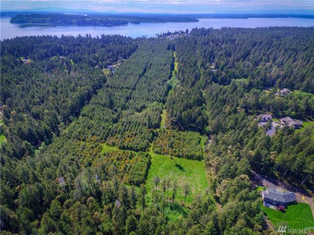 1402 11th Ave Fi, Fox Island, WA 98333 (#1240290) :: Brandon Nelson Partners