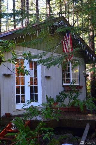190 N Mt. Jupiter Dr, Hoodsport, WA 98548 (#1240907) :: Homes on the Sound
