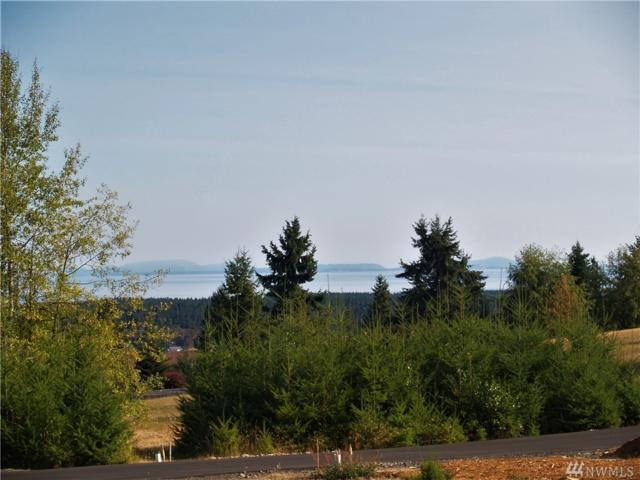 0 Fox Hollow Rd, Sequim, WA 98382 (#1241001) :: Homes on the Sound