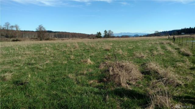 0 Frostad Rd, Oak Harbor, WA 98277 (#1241009) :: Homes on the Sound