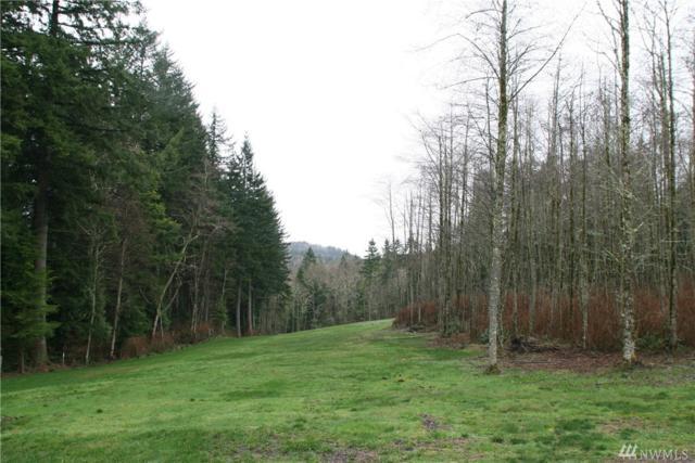 176-XX SE Cougar Mountain Dr, Bellevue, WA 98006 (#1241052) :: Brandon Nelson Partners
