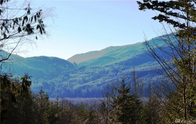 5387 Salmon Ridge Lane, Everson, WA 98244 (#1241112) :: Homes on the Sound