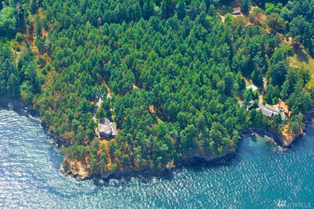 89 Walling Rd, San Juan Island, WA 98250 (#1241493) :: Homes on the Sound