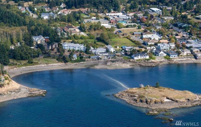 67 Main St #7, Orcas Island, WA 98245 (#1241643) :: Brandon Nelson Partners