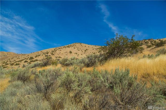 0-XXX Cap Riste Outlook, Entiat, WA 98822 (#1241658) :: Tribeca NW Real Estate