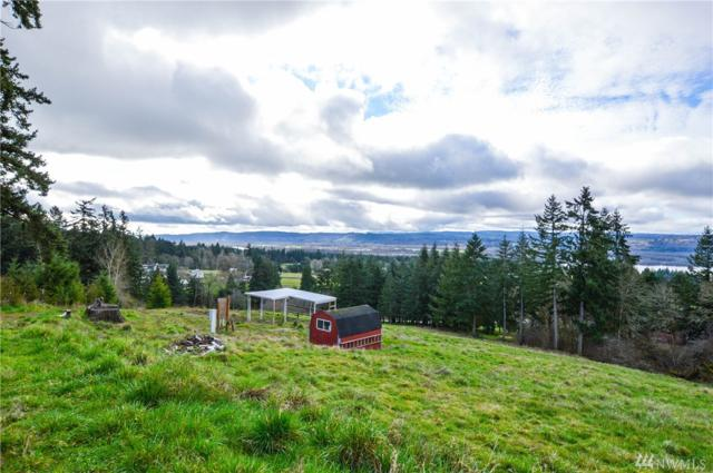 1600-BLOCK Green Mountain Rd, Kalama, WA 98625 (#1242258) :: Real Estate Solutions Group