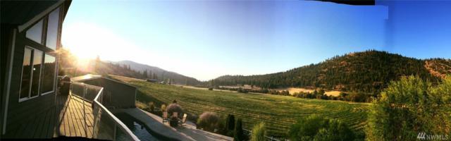 425 Antoine Creek Rd, Chelan, WA 98816 (#1242282) :: Keller Williams - Shook Home Group