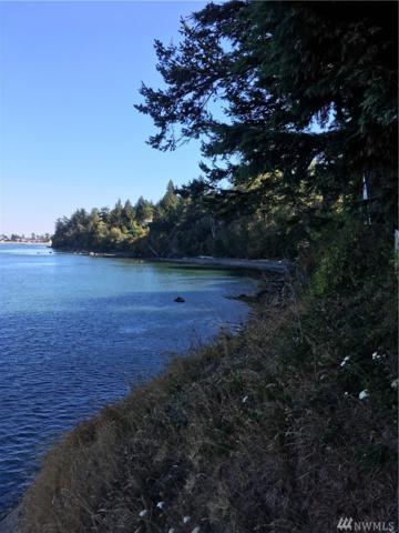 2700 N Nugent Rd, Lummi Island, WA 98262 (#1242816) :: Brandon Nelson Partners
