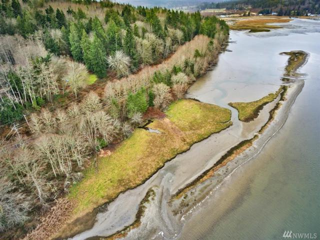 393 Fairmount Rd, Port Townsend, WA 98368 (#1242869) :: Real Estate Solutions Group