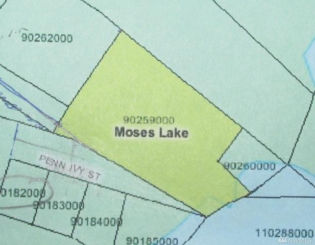 805 Penn Ivy St, Moses Lake, WA 98837 (#1243275) :: Tribeca NW Real Estate