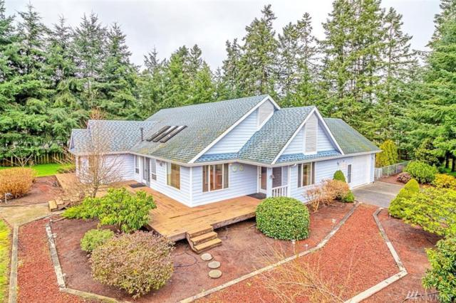 97 Arcadia Dr, Port Townsend, WA 98368 (#1243703) :: Homes on the Sound