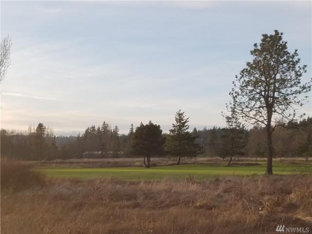 0 Vacant Land, Langley, WA 98260 (#1244062) :: Homes on the Sound