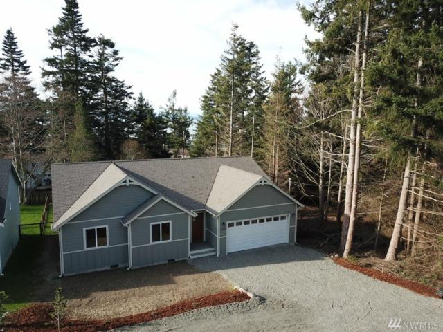 1282 Halsey Dr, Coupeville, WA 98239 (#1244232) :: Homes on the Sound