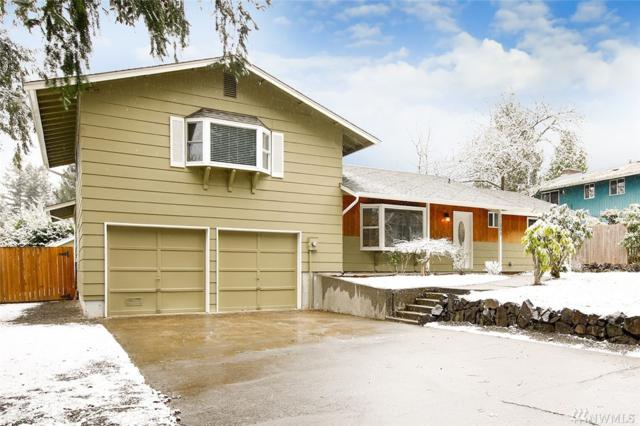 11205 111th St SW, Lakewood, WA 98498 (#1244629) :: Keller Williams - Shook Home Group