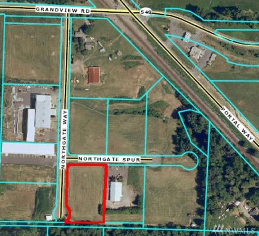 6810 Northgate Wy, Ferndale, WA 98248 (#1244685) :: Ben Kinney Real Estate Team